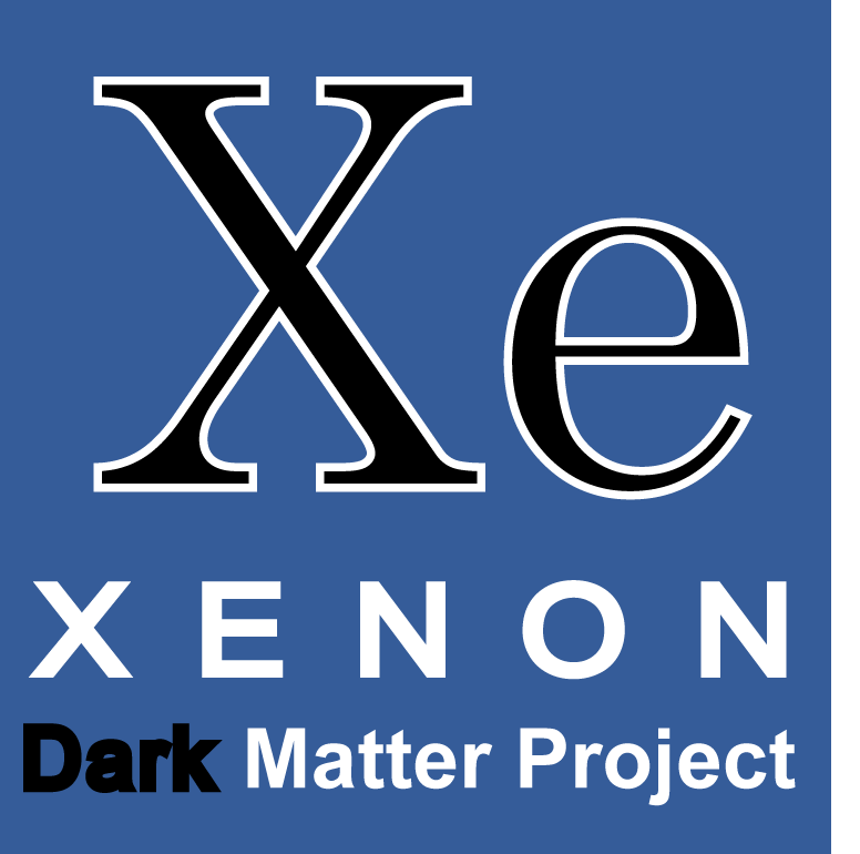 Dark Matter Search: XENON.
